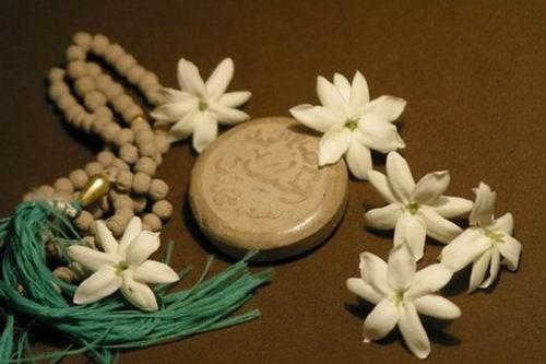 http://kajavehdaran.samenblog.com/uploads/k/kajavehdaran/386782.jpg